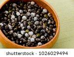 job's tears   coix lachryma... | Shutterstock . vector #1026029494