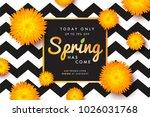 modern promotion spring web...