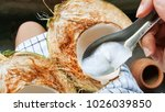 use spoon picking up young... | Shutterstock . vector #1026039850