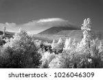 landscape of tenerife island  ... | Shutterstock . vector #1026046309
