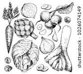hand drawn set of farm... | Shutterstock . vector #1026074149