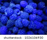 fresh and sweet blue... | Shutterstock . vector #1026106930
