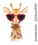 funny watercolor giraffe in... | Shutterstock . vector #1026163954