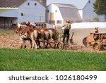 Amish Man Harvesting The Field...