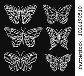 a set of butterfly illustration.... | Shutterstock . vector #1026190510