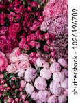Small photo of Beautiful fresh blossoming flowers texture at the florist shop in ombre color from magenta pink to pastel pink: ranunculus, peonies, roses, tulips, carnations, top view, flat lay
