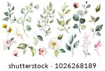 Stock photo big set watercolor elements wildflowers herbs leaf collection garden and wild forest herb 1026268189