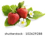 ripe strawberry with leaves and flowers, isolation - stock photo
