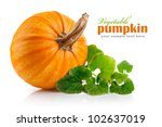 Yellow Pumpkin Vegetable With...