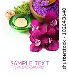 spa background | Shutterstock . vector #102643640