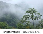 mountain in the mist | Shutterstock . vector #1026437578
