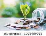 plant growing from coins... | Shutterstock . vector #1026459016