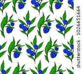 berries vector illustration....   Shutterstock .eps vector #1026651664