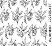 berries vector illustration....   Shutterstock .eps vector #1026651694