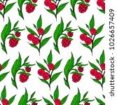 berries poster illustration....   Shutterstock . vector #1026657409