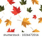 red yellow green maple leaf... | Shutterstock .eps vector #1026672016
