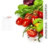 tomatoes  chives  peppers ... | Shutterstock . vector #102669914