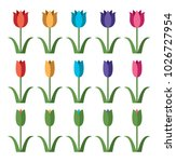 vector set of colorful tulip... | Shutterstock .eps vector #1026727954
