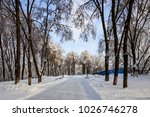 winter park with trees covered...   Shutterstock . vector #1026746278
