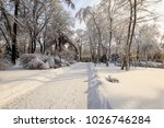 winter park with trees covered...   Shutterstock . vector #1026746284