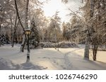 winter park with trees covered...   Shutterstock . vector #1026746290