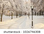 winter park with trees covered...   Shutterstock . vector #1026746308