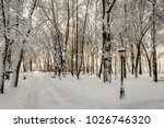 winter park with trees covered...   Shutterstock . vector #1026746320