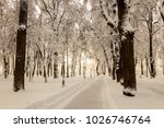 winter park with trees covered... | Shutterstock . vector #1026746764