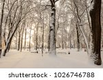 winter park with trees covered... | Shutterstock . vector #1026746788