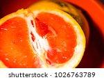 juicy bright grapefruit | Shutterstock . vector #1026763789