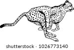 cheetah during the chase ... | Shutterstock .eps vector #1026773140
