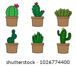 Collection Of Cactus Plants In...