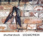 old rusty scissors for shearing ...