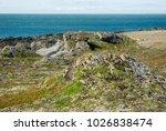 arctic  barents sea  island ... | Shutterstock . vector #1026838474