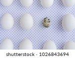 White Eggs On Polka Dot Fabric