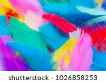 close up to bright colorful... | Shutterstock . vector #1026858253