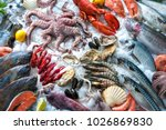seafood on ice at the fish... | Shutterstock . vector #1026869830