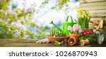 gardening tools and spring... | Shutterstock . vector #1026870943