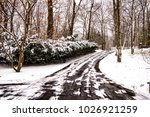 winter driveway cleared of snow | Shutterstock . vector #1026921259