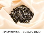 job's tears   coix lachryma... | Shutterstock . vector #1026921820