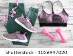 womens active clothes  leggings ... | Shutterstock . vector #1026947020