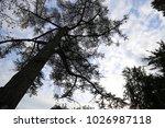 outdoor view from below of the...   Shutterstock . vector #1026987118