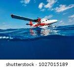 Split Underwater Photo Of Smal...