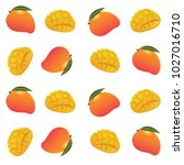 colorized mango fruits vector... | Shutterstock .eps vector #1027016710