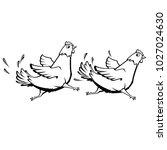 vector cartoon chickens running | Shutterstock .eps vector #1027024630