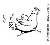 vector funny running chicken... | Shutterstock .eps vector #1027024648