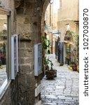 tel aviv  israel   january 2 ... | Shutterstock . vector #1027030870