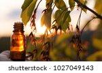 herbal medicine or aromatherapy | Shutterstock . vector #1027049143