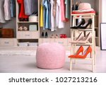 pink ottoman chair and stand... | Shutterstock . vector #1027213216