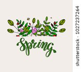 hand writing word spring. brush ... | Shutterstock .eps vector #1027237264